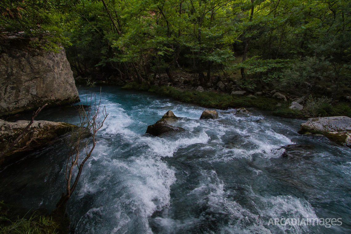 The rushing waters of Lousios river, Arcadia, Peloponnese
