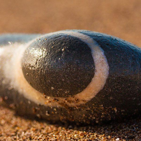 A pebble at Elaia beach. Messenia, Peloponnese, Greece